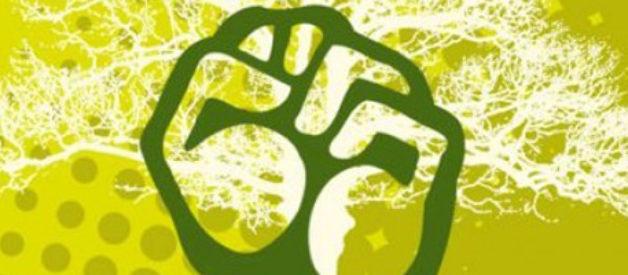 10 idei ecologiste gresite pe care le cred oamenii