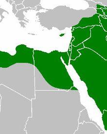 Istoria Califatului Islamic